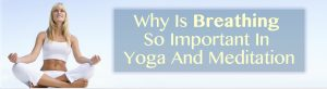 Why Is Breathing So Important In Yoga And Meditation in Charlotte?
